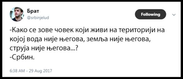 srbintvit